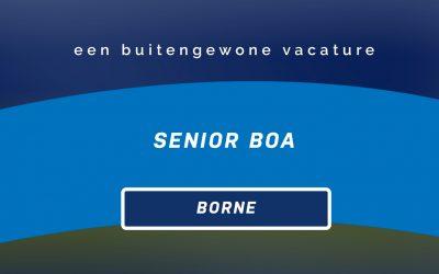 Vacature Medior/Senior BOA | Borne
